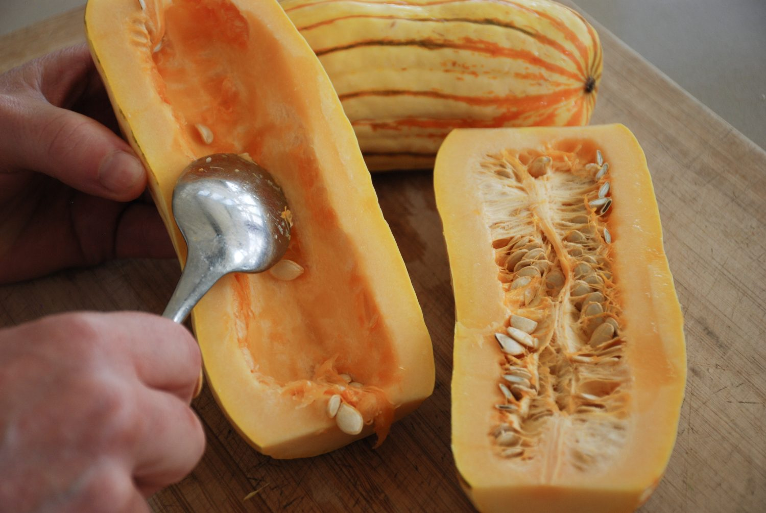 Seeding the Delicata Squash