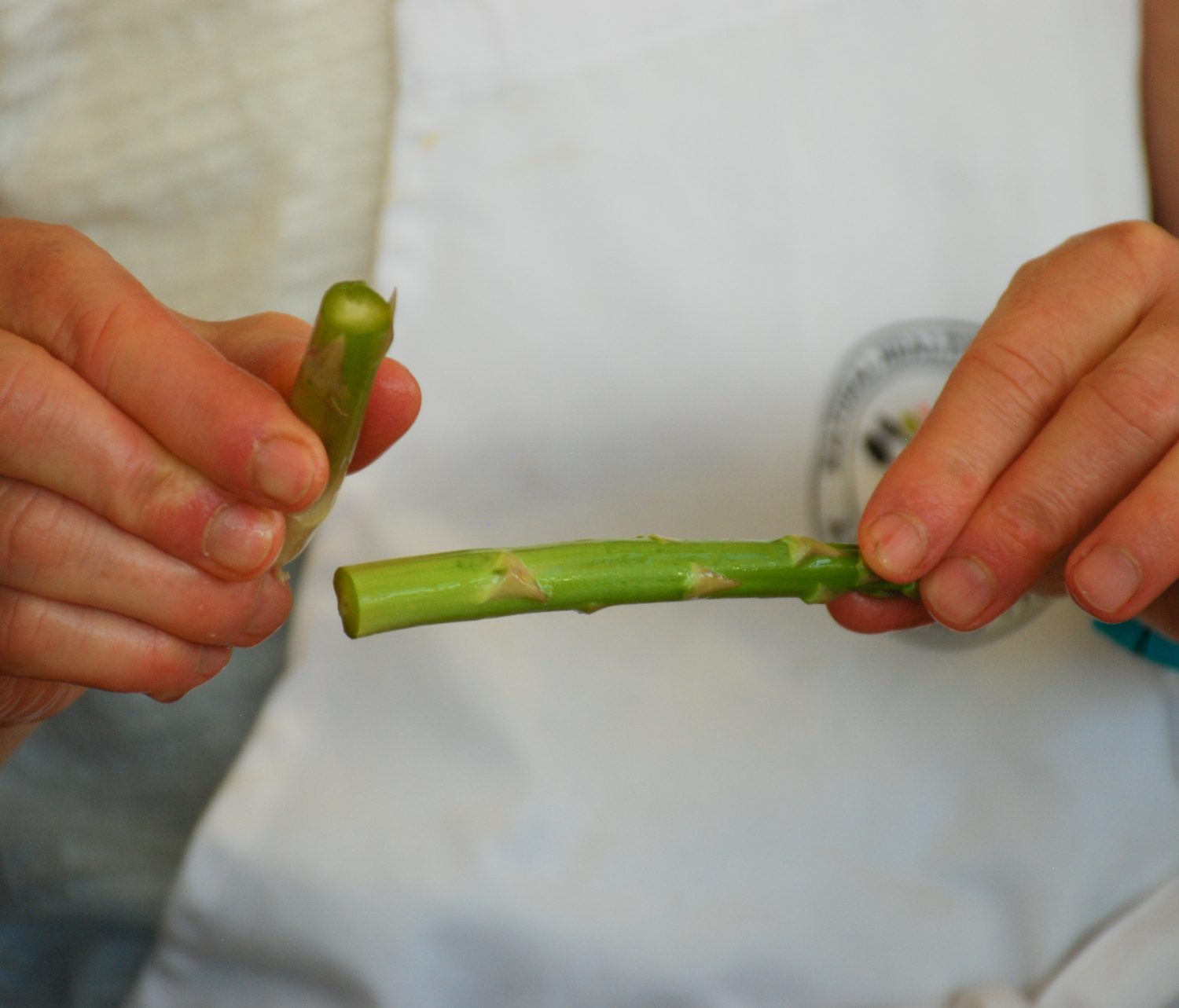 Snapping Asparagus