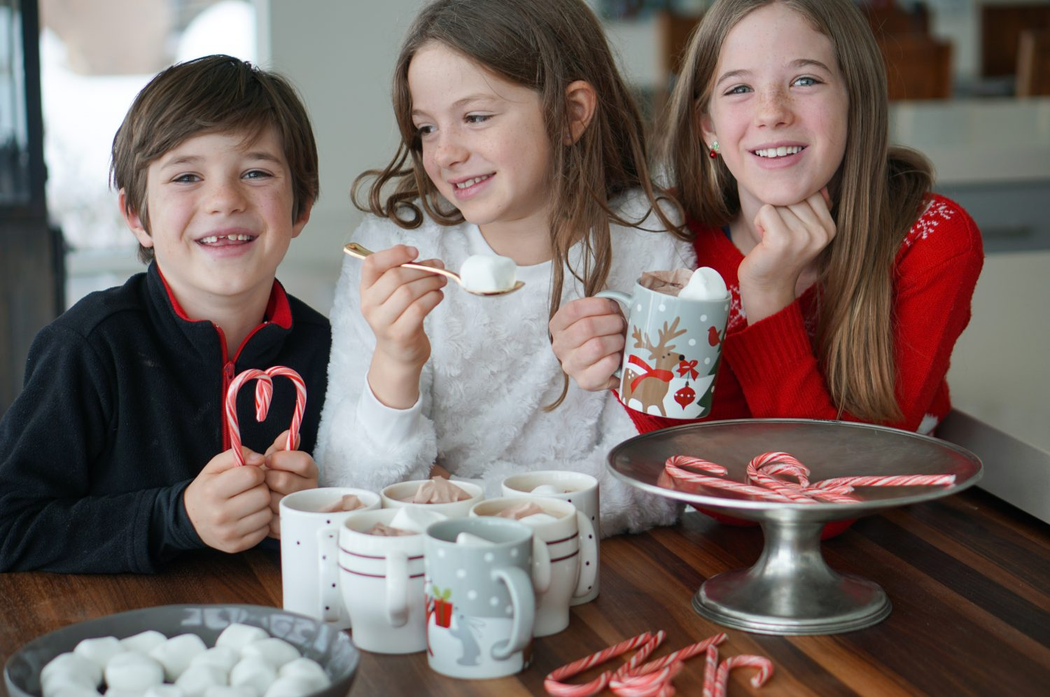 3 Totally Fun DIY Games to Play with the Fam this Holiday Season!