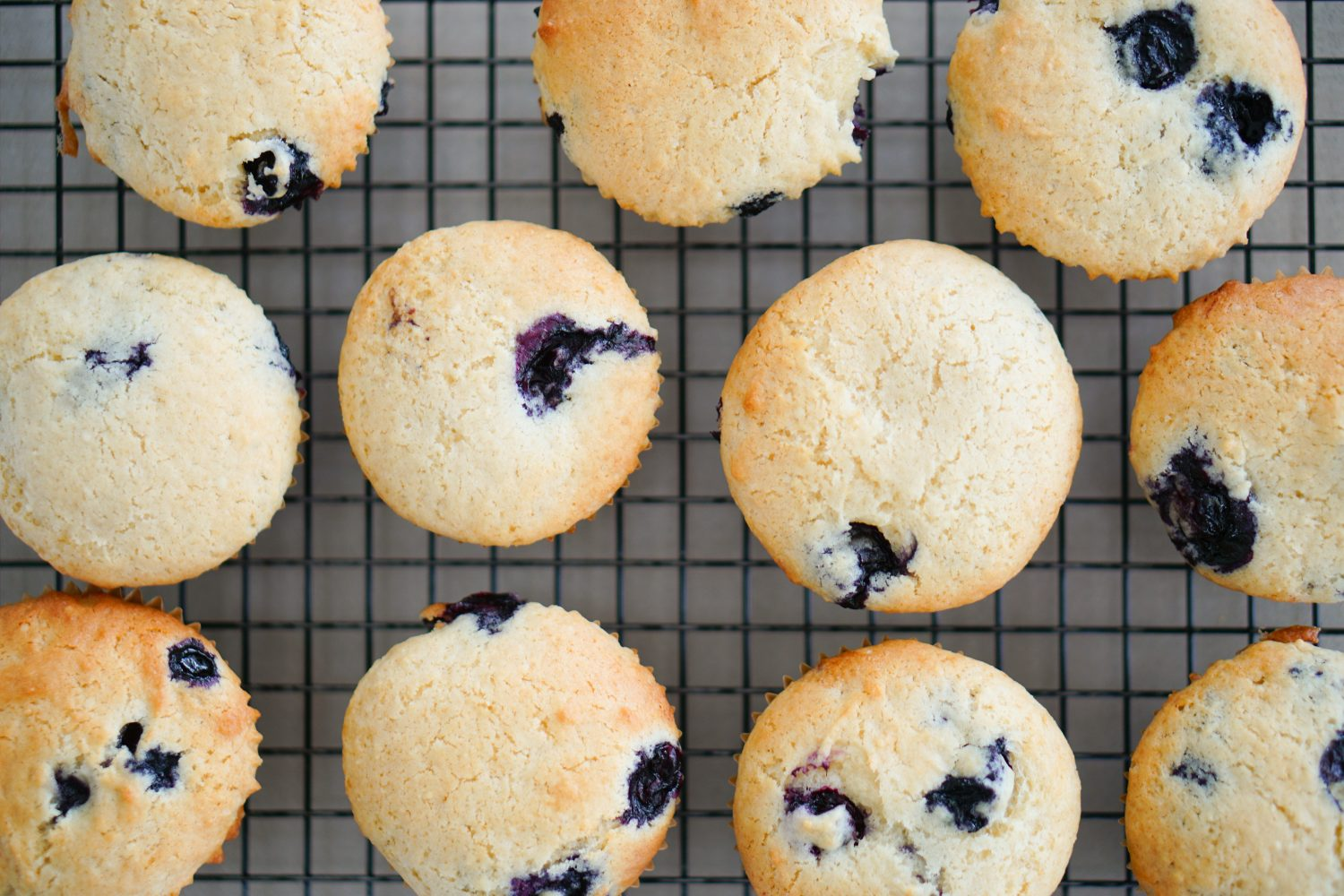 Every Kid's Favorite Blueberry Muffin